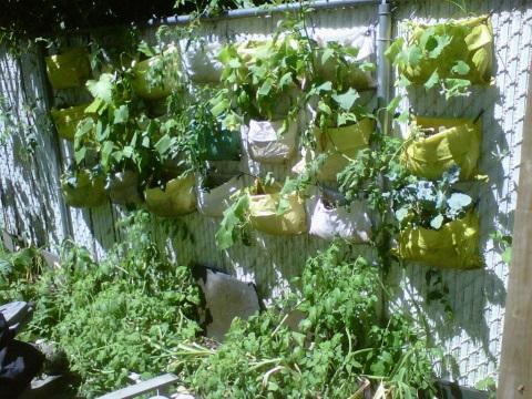 hanging soil bags