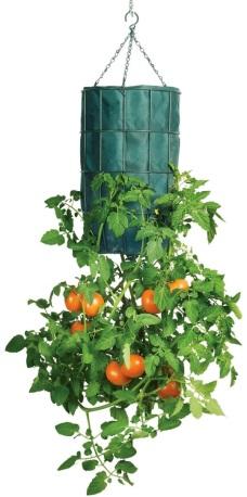 upside-down-tomato-planters